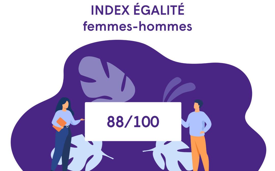 Index égalité femmes-hommes 2020